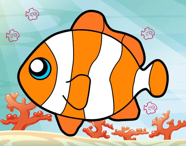 pez-payaso-animales-el-mar-pintado-por-raquel99-9770253